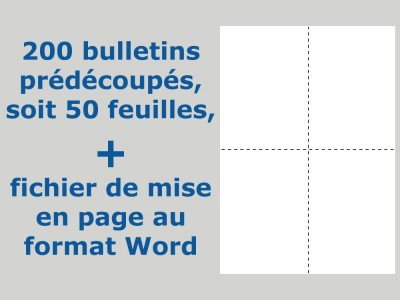 Bulletins de vote prédécoupés avec fichier de mise en page